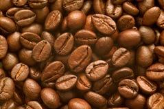 Πλήρης μακροεντολή πλαισίων των φασολιών καφέ Στοκ εικόνα με δικαίωμα ελεύθερης χρήσης