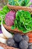πλήρη λαχανικά καλαθιών Στοκ εικόνες με δικαίωμα ελεύθερης χρήσης