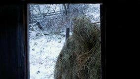 Πλήρωση του hayloft φιλμ μικρού μήκους