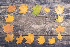 Πλαίσιο από τα φύλλα φθινοπώρου στο αγροτικό ξύλινο υπόβαθρο, τοπ άποψη Στοκ Εικόνες