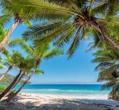 Πλαίσιο από τους φοίνικες σε μια παραλία στις Σεϋχέλλες, νησί Mahe Στοκ εικόνα με δικαίωμα ελεύθερης χρήσης