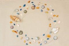 Πλαίσιο θαλασσινών κοχυλιών στο υπόβαθρο άμμου παραλιών Φυσική κατασκευασμένη επιφάνεια ακτών, τοπ άποψη, διάστημα αντιγράφων στοκ εικόνα