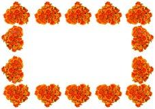 Πλαίσιο καρδιών λουλουδιών Στοκ εικόνες με δικαίωμα ελεύθερης χρήσης