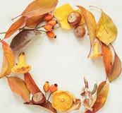 Πλαίσιο κύκλων με τα φύλλα φθινοπώρου στο ξύλινο υπόβαθρο τετράγωνο Στοκ φωτογραφίες με δικαίωμα ελεύθερης χρήσης