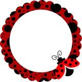 πλαίσιο κύκλων ladybug απεικόνιση αποθεμάτων