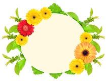 πλαίσιο λουλουδιών ετερόκλητο στοκ φωτογραφίες