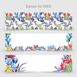 Πλαίσιο λουλουδιών κάκτων Wildflower σε ένα ύφος watercolor Στοκ Εικόνες
