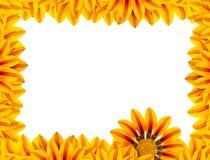 πλαίσιο λουλουδιών χρ&upsil Στοκ εικόνες με δικαίωμα ελεύθερης χρήσης