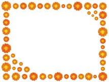 πλαίσιο λουλουδιών Στοκ Εικόνες