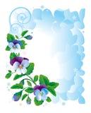 πλαίσιο λουλουδιών pansy Στοκ Εικόνες