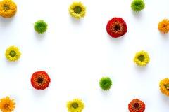 Πλαίσιο με τα ζωηρόχρωμα λουλούδια στο άσπρο υπόβαθρο Στοκ φωτογραφία με δικαίωμα ελεύθερης χρήσης