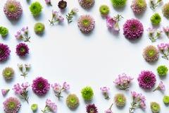 Πλαίσιο με τα ζωηρόχρωμα λουλούδια Στοκ Εικόνες