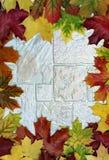 Πλαίσιο με τα ζωηρόχρωμα φύλλα Στοκ Εικόνα