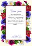 Πλαίσιο με τα λουλούδια του anemone ελεύθερη απεικόνιση δικαιώματος