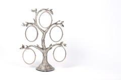 πλαίσιο μορφής από το δέντρ&omi στοκ φωτογραφία με δικαίωμα ελεύθερης χρήσης