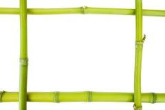 πλαίσιο μπαμπού στοκ φωτογραφία με δικαίωμα ελεύθερης χρήσης
