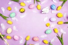 Πλαίσιο Πάσχας με τα χρωματισμένες αυγά, τα φτερά και την τουλίπα στην ιώδη ΤΣΕ Στοκ φωτογραφία με δικαίωμα ελεύθερης χρήσης