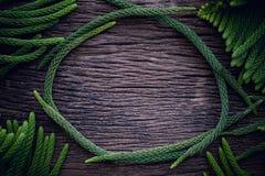 Πλαίσιο συνόρων κύκλων laves για το κείμενο στον ξύλινο πίνακα Διάστημα αντιγράφων για το κείμενο στο φυσικό υπόβαθρο Επίπεδος βά στοκ φωτογραφίες με δικαίωμα ελεύθερης χρήσης