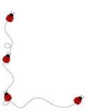 πλαίσιο συνόρων ladybug απεικόνιση αποθεμάτων