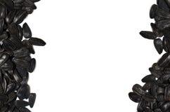 Πλαίσιο σωρών ηλίανθων σπόρων στο άσπρο υπόβαθρο Ελεύθερο κείμενο πρόσθιο το κείμενό σας Στοκ φωτογραφία με δικαίωμα ελεύθερης χρήσης