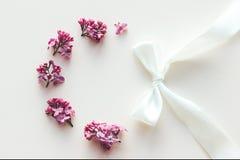 Πλαίσιο των ιωδών λουλουδιών στο άσπρο υπόβαθρο στοκ φωτογραφία