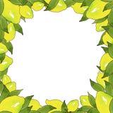 Πλαίσιο των κίτρινων φρούτων λεμονιών με τα πράσινα φύλλα που απομονώνεται στο άσπρο υπόβαθρο στο όμορφο ύφος Χειροποίητη απεικόν απεικόνιση αποθεμάτων