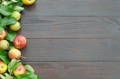 Πλαίσιο των μήλων και των αχλαδιών στο σκοτεινό ξύλινο υπόβαθρο Στοκ Φωτογραφίες