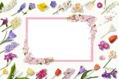 Πλαίσιο των πολύχρωμων λουλουδιών, πράσινα φύλλα, κλάδοι στο άσπρο υπόβαθρο Επίπεδος βάλτε, τοπ άποψη floral πρότυπο καρδιών λουλ στοκ φωτογραφίες με δικαίωμα ελεύθερης χρήσης