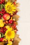 Πλαίσιο φθινοπώρου με τους καρπούς, τις κολοκύθες και τους ηλίανθους Στοκ Εικόνα