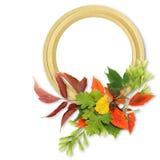 πλαίσιο φθινοπώρου που &alp Διανυσματική απεικόνιση