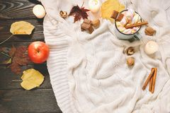 Πλαίσιο φθινοπώρου φιαγμένο από ξηρά φύλλα πτώσης, κούπα του κακάου με τα marshmellows, καρύδια, κανέλα, καρό, μήλα Τοπ άποψη σχε Στοκ Φωτογραφίες