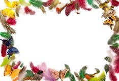πλαίσιο φτερών Στοκ Φωτογραφίες