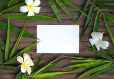 Πλαίσιο φύλλων μπαμπού στο αγροτικό ξύλινο υπόβαθρο Κενό έγγραφο στο φύλλο μπαμπού και το λουλούδι frangipani Στοκ Εικόνες