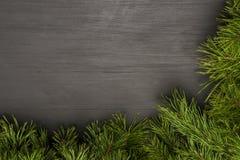 Πλαίσιο Χριστουγέννων στο μαύρο ξύλινο υπόβαθρο με τους φυσικούς έλατο-κλάδους πεύκων Σχεδιάγραμμα για το σχέδιο Χριστουγέννων Στοκ φωτογραφία με δικαίωμα ελεύθερης χρήσης