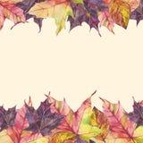 Πλαίσιο Watercolor με τα φύλλα φθινοπώρου στο μπεζ υπόβαθρο απεικόνιση αποθεμάτων