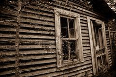 Πλαισιωμένες ξύλο μνήμες 2 στοκ εικόνες