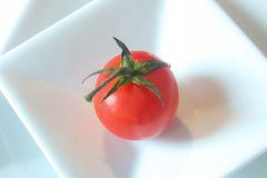 πλαισιωμένη ντομάτα στοκ φωτογραφία με δικαίωμα ελεύθερης χρήσης