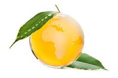 πλανήτης που προστατεύεται πορτοκαλής Στοκ Εικόνες