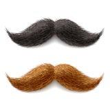 πλαστά mustaches Στοκ Εικόνες