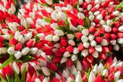 Πλαστικά πλαστά ζωηρόχρωμα λουλούδια λουλουδιών Στοκ φωτογραφίες με δικαίωμα ελεύθερης χρήσης