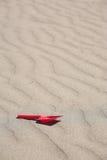 πλαστικές κόκκινες υφάνσεις φτυαριών άμμου Στοκ Φωτογραφίες
