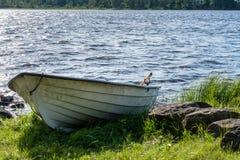 Πλαστική βάρκα κωπηλασίας που σέρνεται επάνω στην ακτή Στοκ εικόνα με δικαίωμα ελεύθερης χρήσης