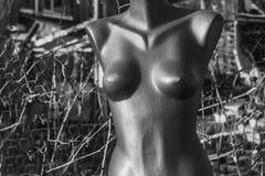 Πλαστική γκρίζα αποτυχία ενός γυμνού μανεκέν γυναικών στην οδό στοκ φωτογραφία με δικαίωμα ελεύθερης χρήσης
