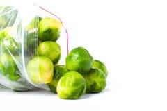 Πλαστική τσάντα με τις παγωμένες Βρυξέλλες - νεαροί βλαστοί που απομονώνονται στο λευκό veget Στοκ φωτογραφίες με δικαίωμα ελεύθερης χρήσης