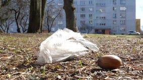Πλαστική τσάντα που πετά στο επίγειο 4k μήκος σε πόδηα