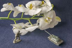 Πλαστικοί δεξαμενή και στρατιωτικός παιχνιδιών με το άσπρο λουλούδι στοκ φωτογραφίες με δικαίωμα ελεύθερης χρήσης