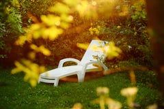 Πλαστικός αργόσχολος στον άνετο εσωτερικό κήπο Στοκ Φωτογραφία