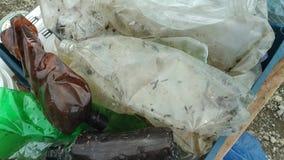 Πλαστικό που συλλέγεται στην οδό φιλμ μικρού μήκους