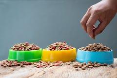 Πλαστικό σύνολο κύπελλων εκμετάλλευσης χεριών με τα τρόφιμα σκυλιών στο γκρίζο υπόβαθρο στοκ φωτογραφίες με δικαίωμα ελεύθερης χρήσης
