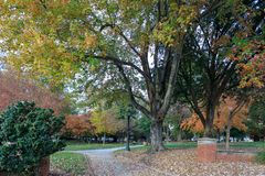 Πλατεία του Nash σε στο κέντρο της πόλης Raleigh στοκ εικόνα με δικαίωμα ελεύθερης χρήσης